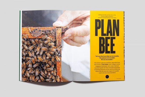 ReNew Magazine feature article: Plan Bee